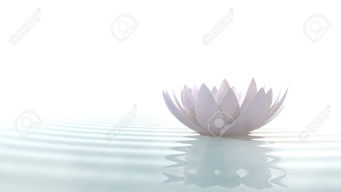 Centrer de remise en forme Aquatique à céder